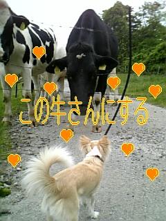 f0148927_17212736.jpg