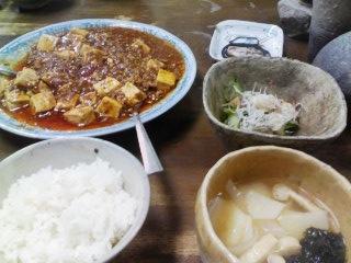むさしの特製麻婆豆腐_e0046128_14565936.jpg