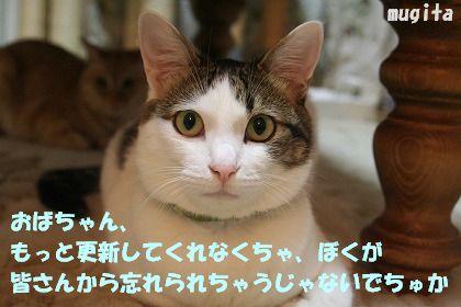f0063729_0285059.jpg