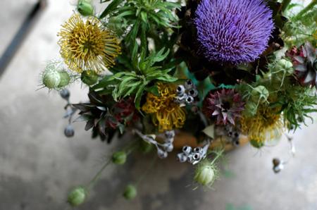 花だらけ~**_a0082146_14721.jpg