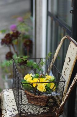 花だらけ~**_a0082146_1474981.jpg