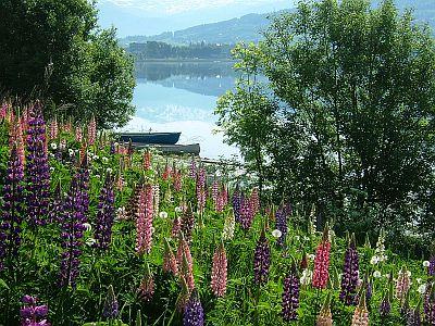 フィヨルドの美しい風景(6/2)_e0022175_21464741.jpg