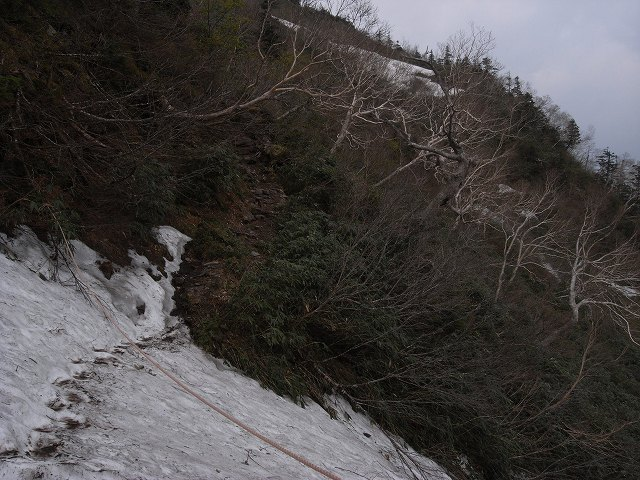6月9日、苗場山に登る_f0138096_167527.jpg