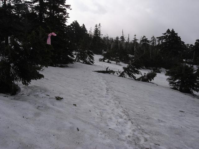 6月9日、苗場山に登る_f0138096_169422.jpg