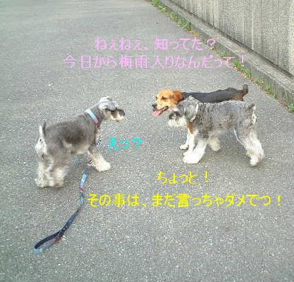 d0079701_21421349.jpg