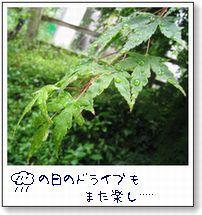b0082747_20561984.jpg