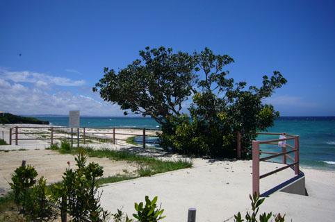 simon beach._c0153966_20392025.jpg