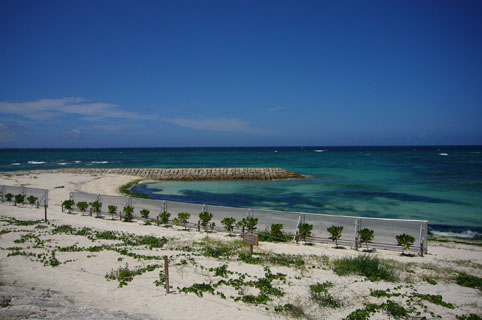 simon beach._c0153966_2039424.jpg