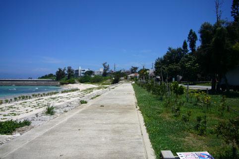 simon beach._c0153966_20395653.jpg