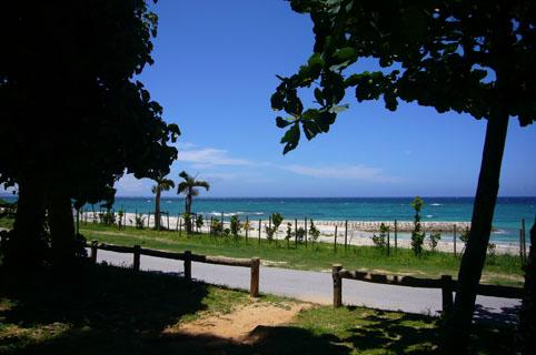 simon beach._c0153966_2040378.jpg