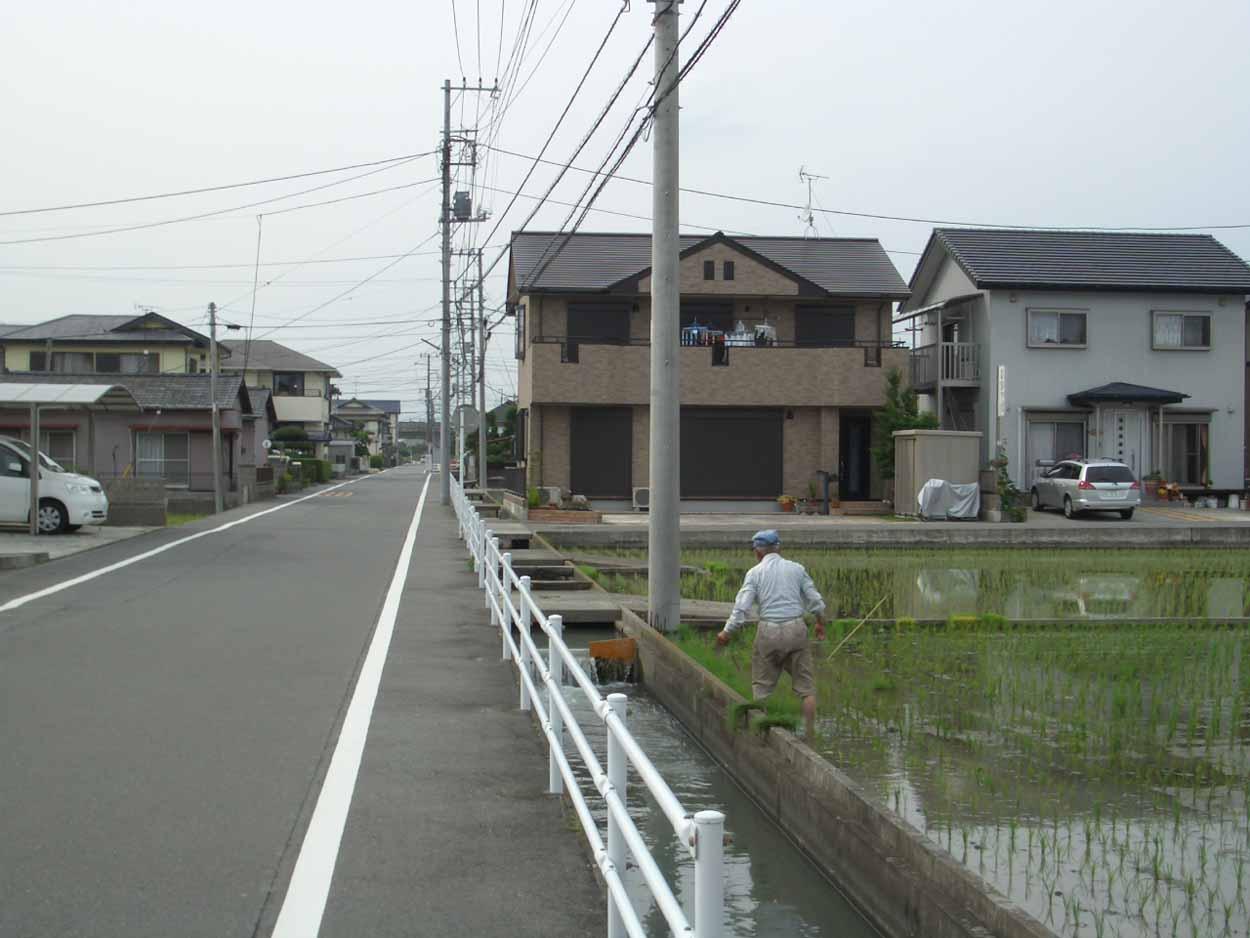 一万歩 富士南『ききょうの里』コース_f0141310_2336285.jpg