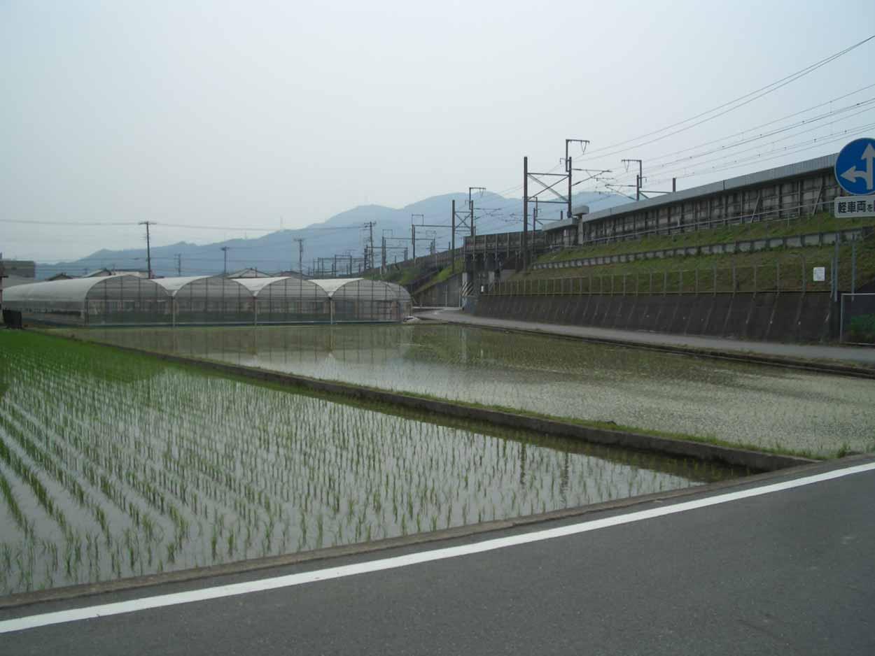 一万歩 富士南『ききょうの里』コース_f0141310_23413042.jpg