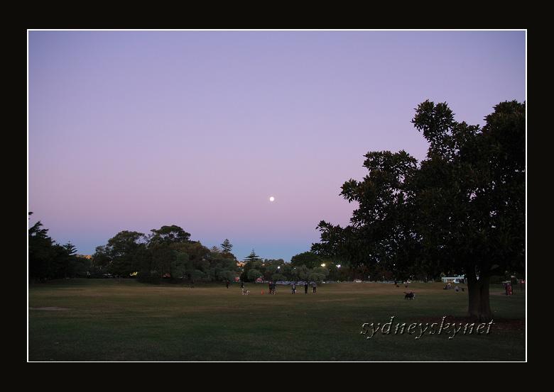 月が昇る 日は暮れる_f0084337_2259978.jpg