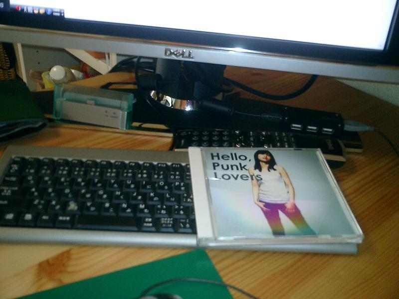 祝ブログ開設!&『Hello, Punk Lovers』_f0177347_12314231.jpg