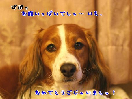 d0013149_1125822.jpg