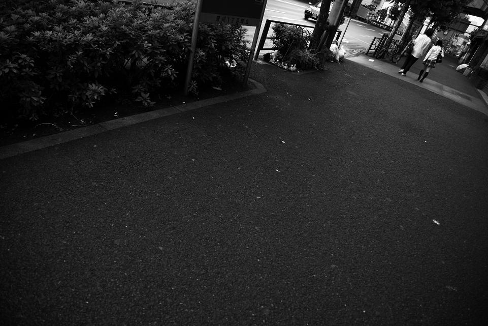 君住む街ⅩⅤ_c0129671_1952047.jpg
