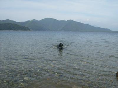 本栖湖へ_b0084194_2032091.jpg