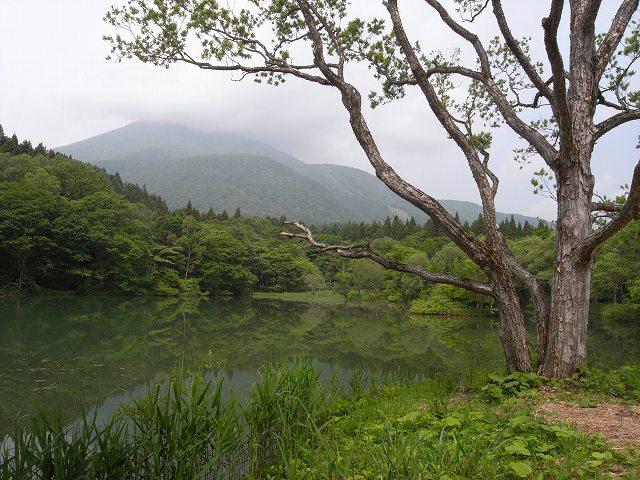 妙高高原で遊ぶ_f0138096_15454037.jpg