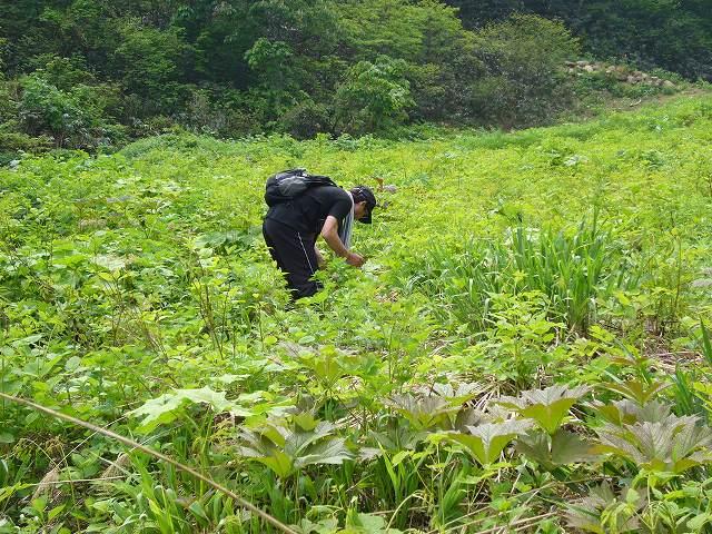 妙高高原で遊ぶ_f0138096_15481189.jpg