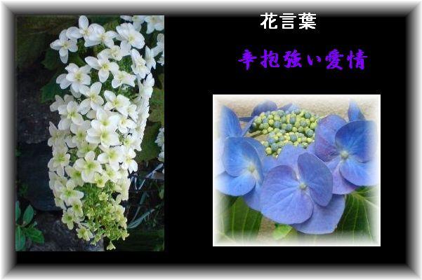 b0085815_232461.jpg