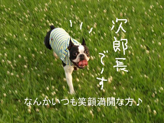 f0133316_22213264.jpg