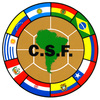 南米王者決定戦:Copa LIBERTADORES 2008に見たCariocaの姿。やっぱりFLAが嫌い。_b0032617_20104849.jpg