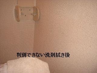 四箇所の諸々_f0031037_21191760.jpg