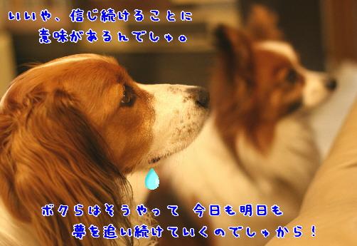 d0013149_10551049.jpg