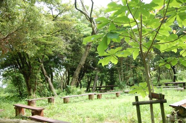 ササユリ観賞者案内  in  うみべの森  by  (TATE-misaki)_c0108460_15245825.jpg