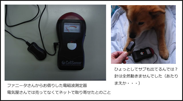 b0019313_18265941.jpg