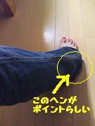 b0098660_2037648.jpg