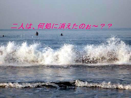 a0104464_1563757.jpg