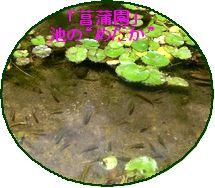 a0052666_2434319.jpg