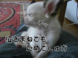 f0170966_1112176.jpg