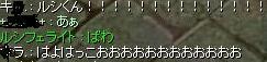 b0137297_135374.jpg