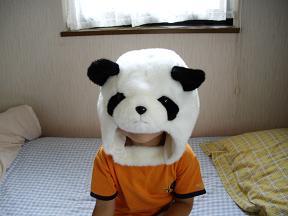 新種パンダ!_f0042307_1513204.jpg