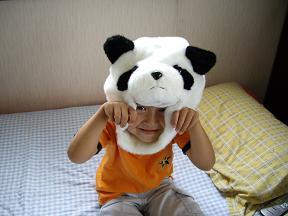 新種パンダ!_f0042307_1514866.jpg