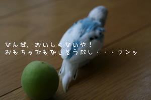 b0143835_2346667.jpg