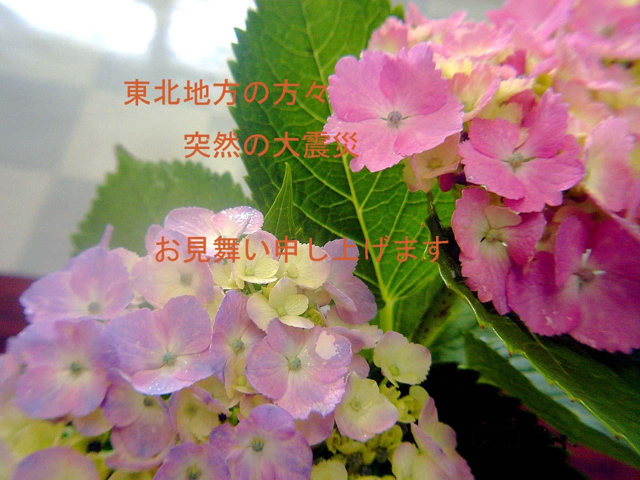 b0012636_23233948.jpg