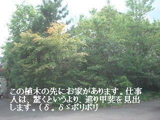 f0031037_17342418.jpg