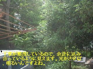 f0031037_18104543.jpg