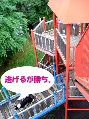 f0132070_23442359.jpg