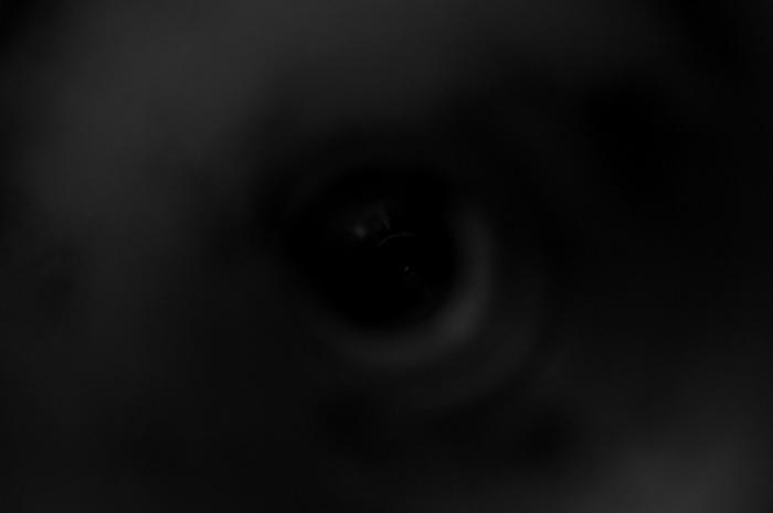 ホラー映画に出てきそうな目ぽい写真が撮れました。お酒を飲みながら暗い部屋で写真撮ってる自分の姿の方が怖いと思うのですけどね(笑)