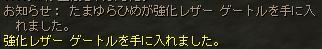 れべるあっぷ_b0062614_3452897.jpg