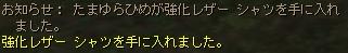 れべるあっぷ_b0062614_3453487.jpg