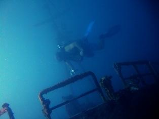 [ダイビング]ウミウシと沈船と_a0043520_23233439.jpg