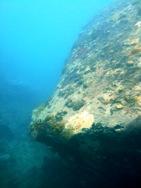 [ダイビング]ウミウシと沈船と_a0043520_23261157.jpg