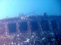 [ダイビング]ウミウシと沈船と_a0043520_23282056.jpg