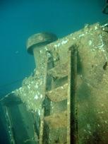 [ダイビング]ウミウシと沈船と_a0043520_23313589.jpg