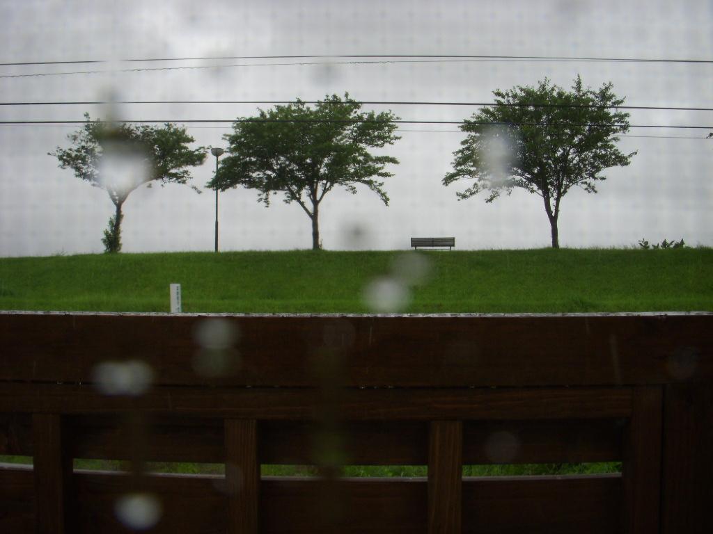 雨の日の過ごし方_c0156749_1464179.jpg